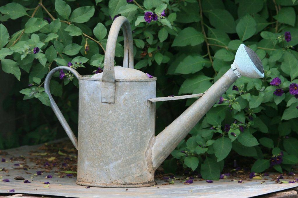 vatten till trädgården