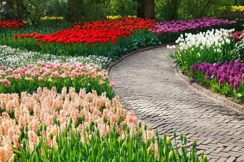 Snabbfixa trädgården